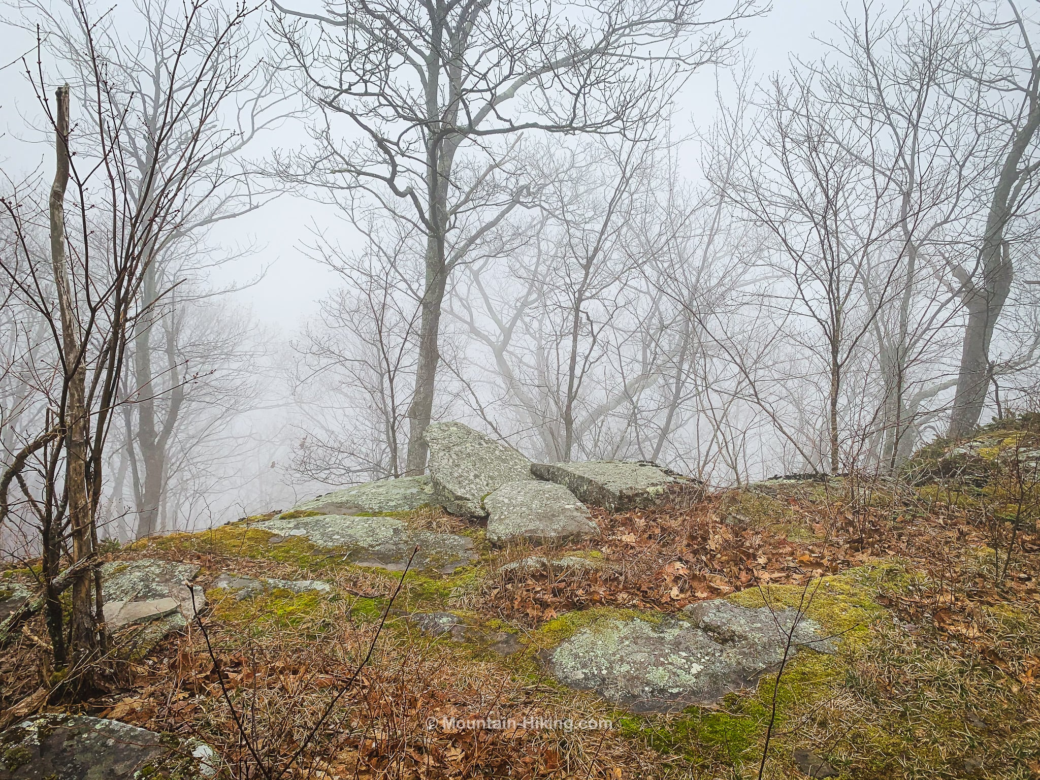 foggy view from scenic mountain ledge