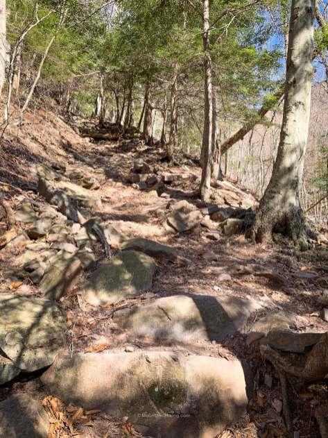 Rocky Mountain trail on Plateau