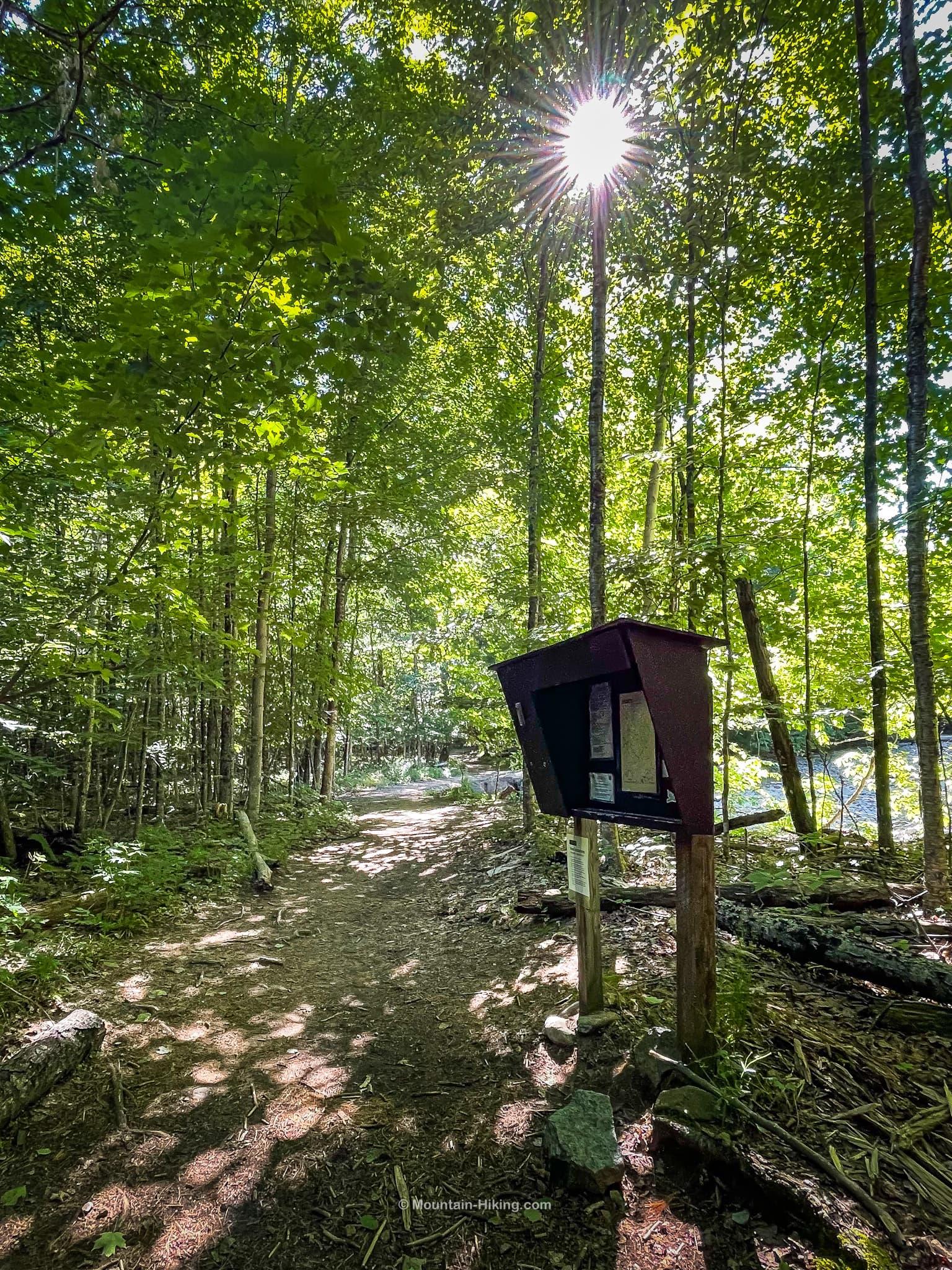 brown metal trail register in woods