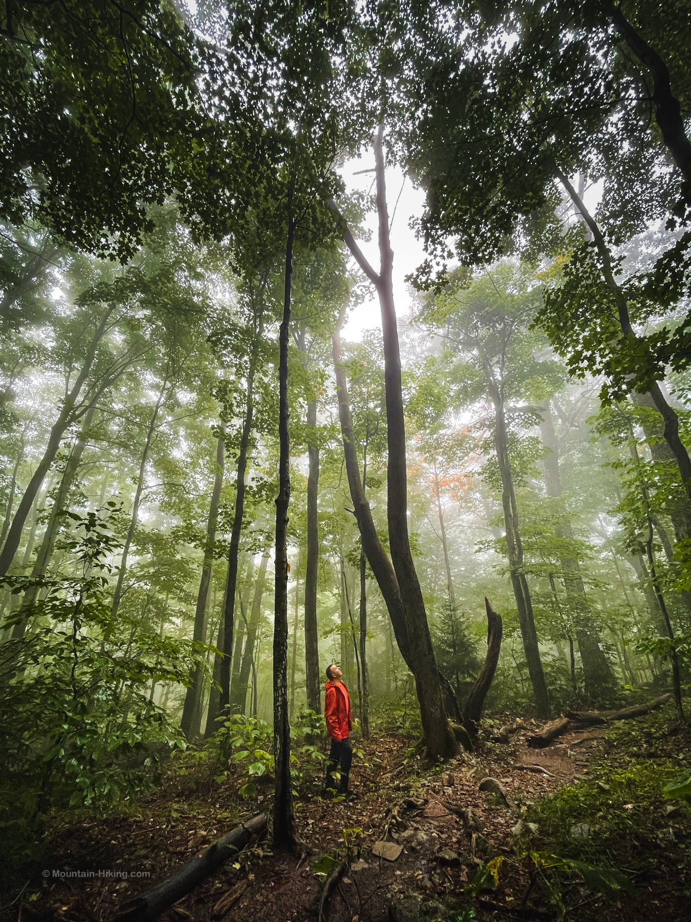 hiking safe with proper clothing and rain gear