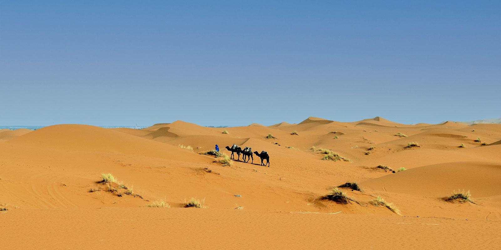 The endless Sahara