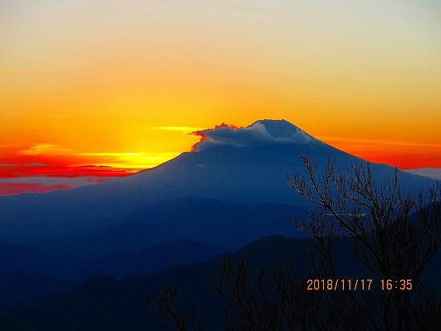 富士山麓トレイルラン攻略【青木ヶ原樹海からの挑戦状】