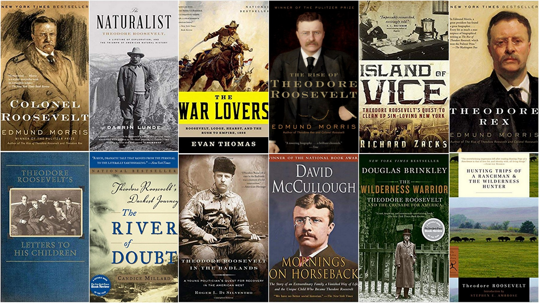 A Reader S Guide To The Lifework Of Theodore Roosevelt
