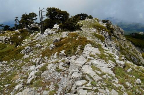 Serra di Crispo, the crest