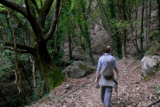 Hiking trail in the vicinity to the trailhead 'Povera Mosca'