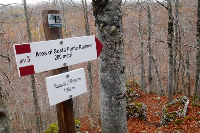 Brand new signposting