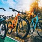 Types Of Mountain Bike