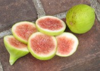 emerald-strawberry-15