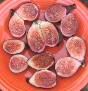 Negronne breba figs (990x1024)