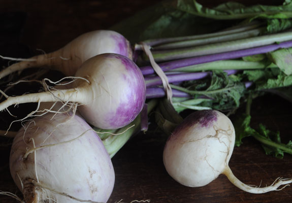 turnips-from-copper-moose-farm