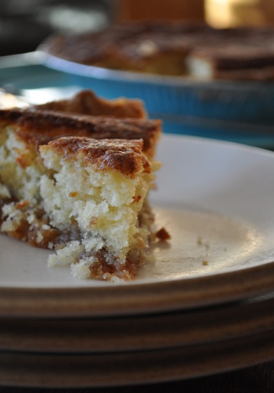 snickerdoodle-pie-better-homes-and-gardens-recipe-1
