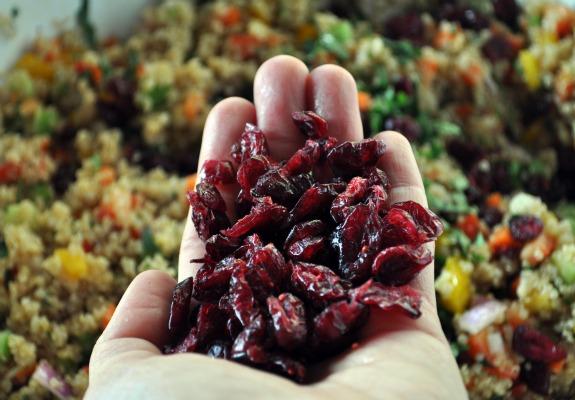 cranberry-cilantro-quinoa-salad-5-mountain-mama-cooks
