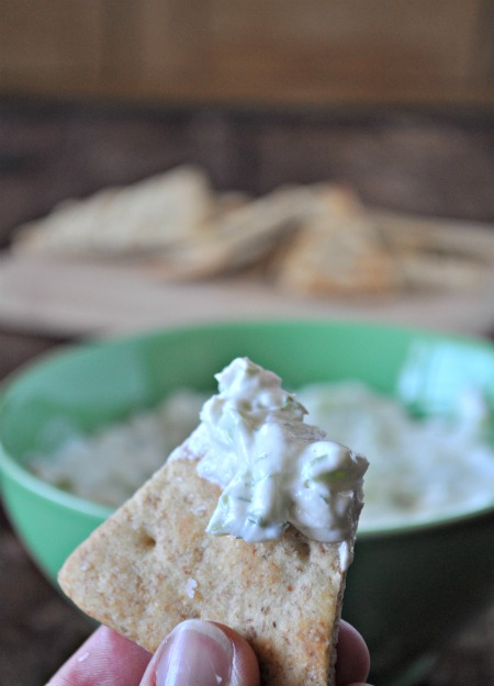 greek-dip-with-pita-chips-mountain-mama-cooks