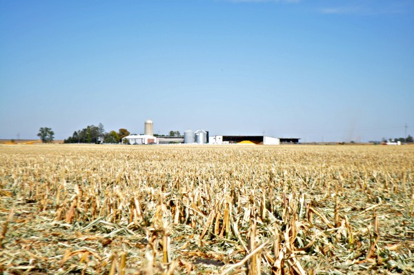Iowa Corn Quest 2012, www.mountainmamacooks.com