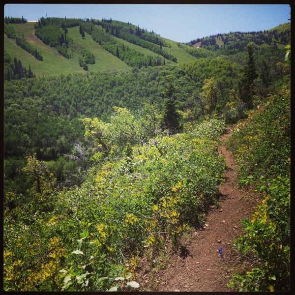 Hiking Armstrong Trail Park City, The Goods | mountainmamacooks.com