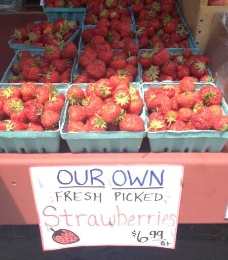 U Pick Strawberries   The Goods   mountainmamacooks.com