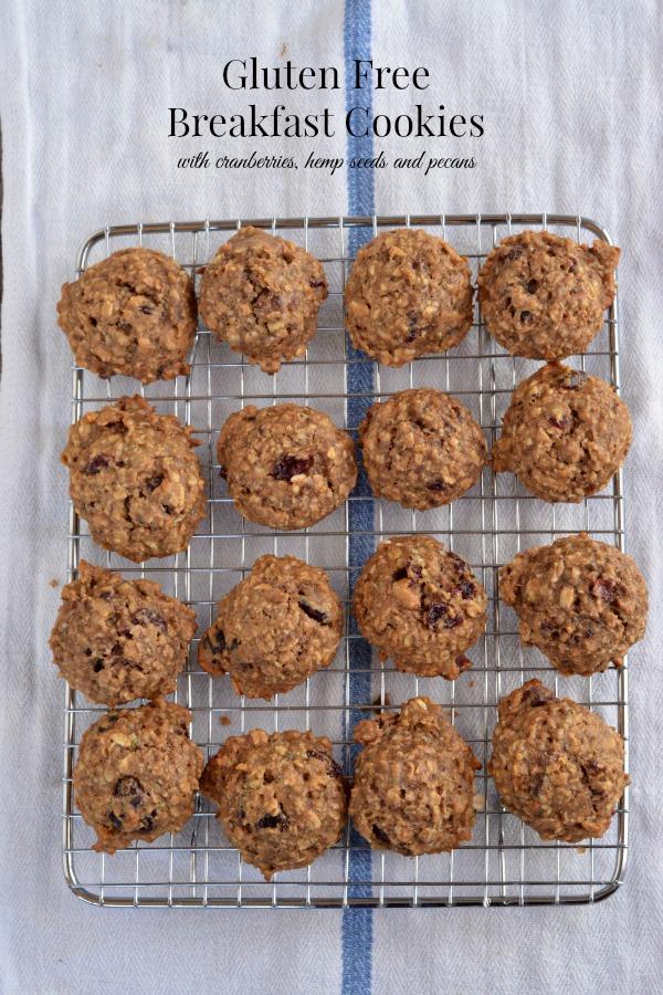 Gluten Free Breakfast Cookies   mountainmamacooks.com