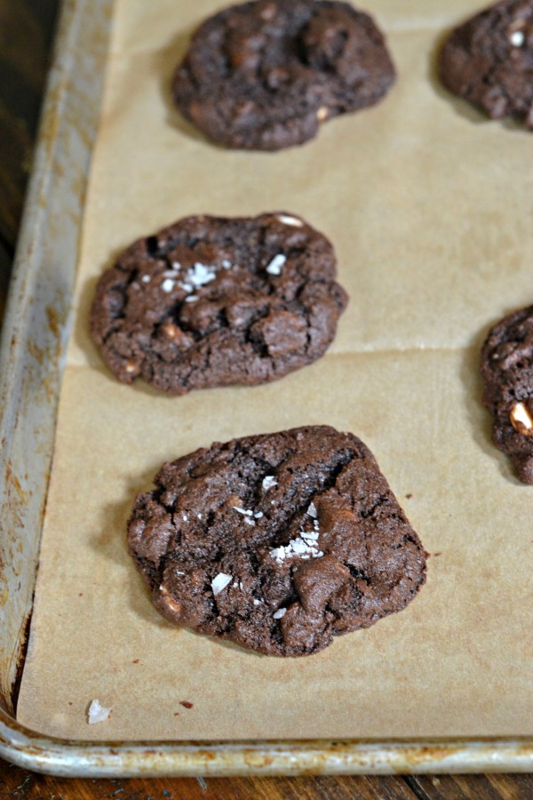 Chocolate Chocolate Chip Cookies | mountainmamacooks.com