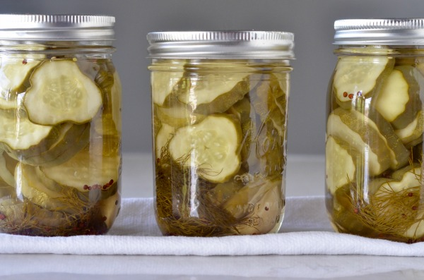 Dill Pickle Chips | mountainmamacooks.com