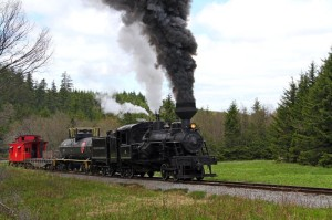 Cass Scenic Railroad State Park railroad operations have been transferred to the State Rail Authority