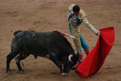 Mindfulness of Anger Allows the Bullfighter To