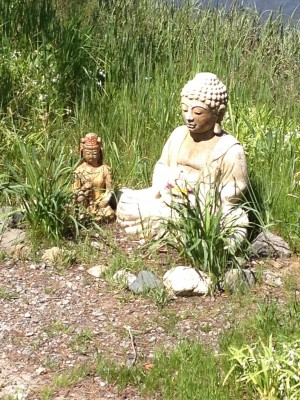 Buddha on the Path