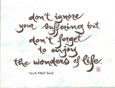 Don't Ignoer Your Suffering But Don't Forget to Enjoy The Wonders of Life