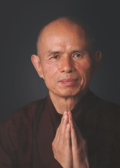 Thich Nhat Hanh Foundation Image