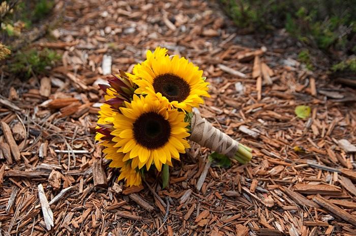 sunflower wedding bouquet   Colorado Wedding