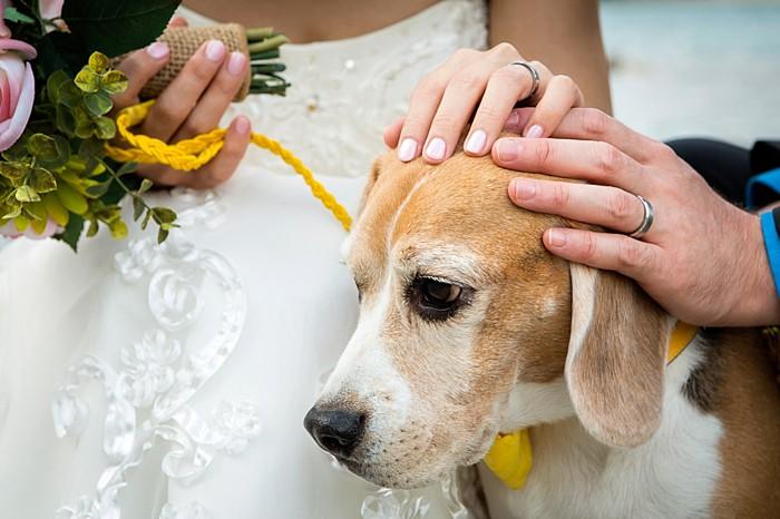 19-banff_wedding_photographer_kimpayantphotography_088