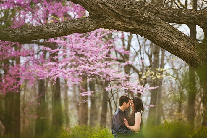 Springtime Roanoke engagement by Concept Photography