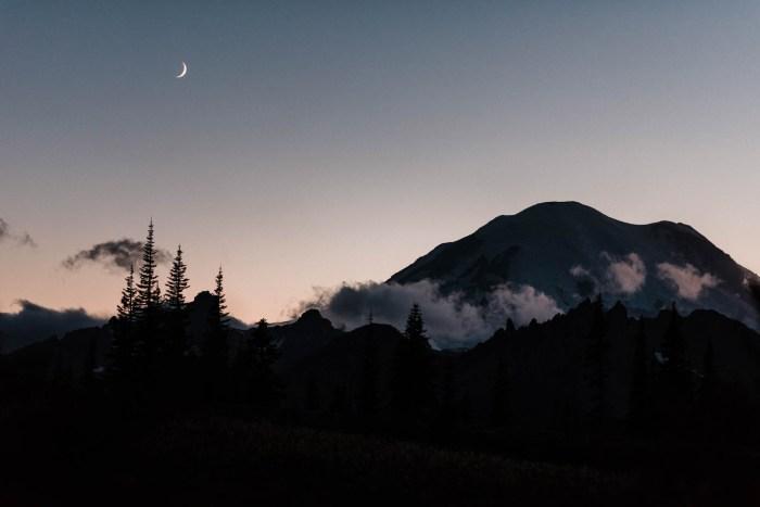 18 Mount Rainier Engagement Washington National Park The Foxes Photography Via MountainsideBride.com