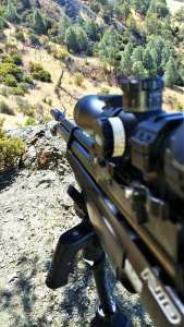 baxter walton pcp airgun hunting