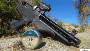 Hatsan FLASH Review/Hunt – MountainSport Airguns Magazine