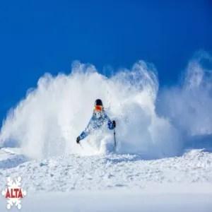 Alta Powder