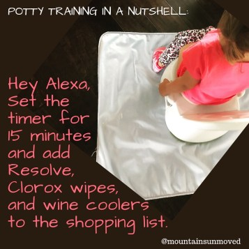 Potty training in a nutshell via Ashley Stevens at Mountains unmoved