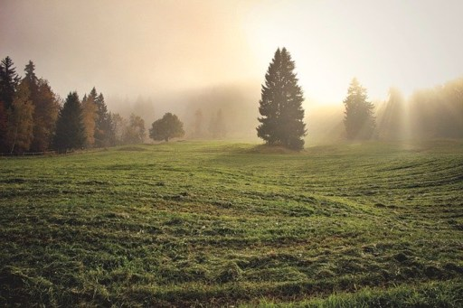 How to be confident god is working when life doesn't go according to plan post via ashley stevens at mountains unmoved