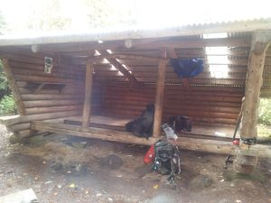 Empty shelter= no rules