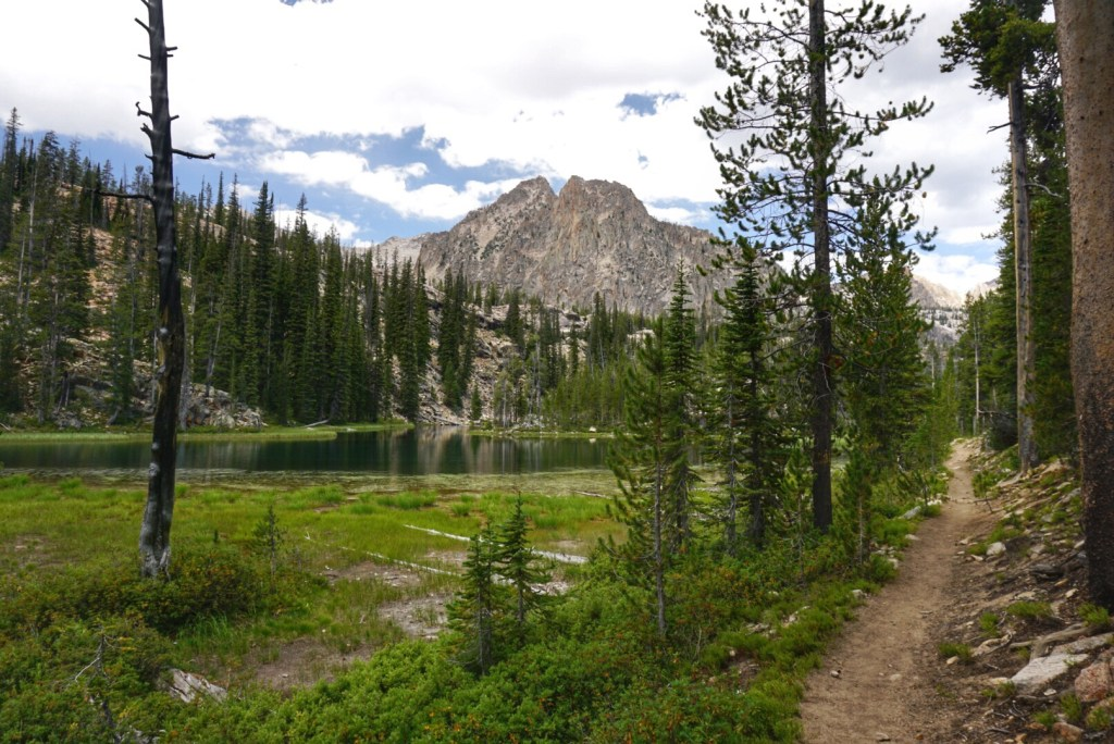 A trail in the Sawtooths