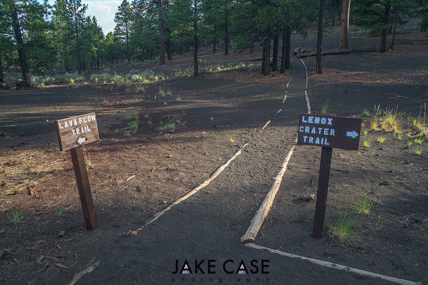 Trail Junction Signs