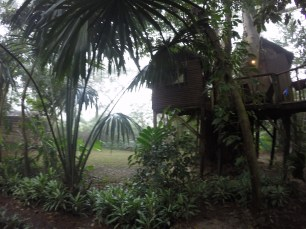 Treehouse at Parrot Nest Lodge cayo district Belize