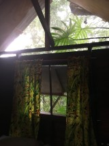 Parrot Nest Lodge in Bullet Tree Falls Belize
