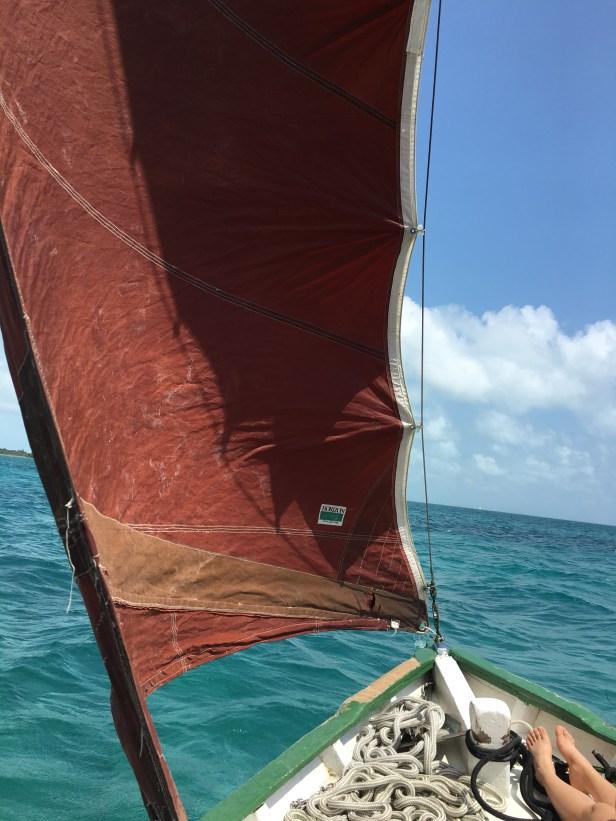 The Blackhawk sailboat's jib sail