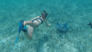Me petting a ray