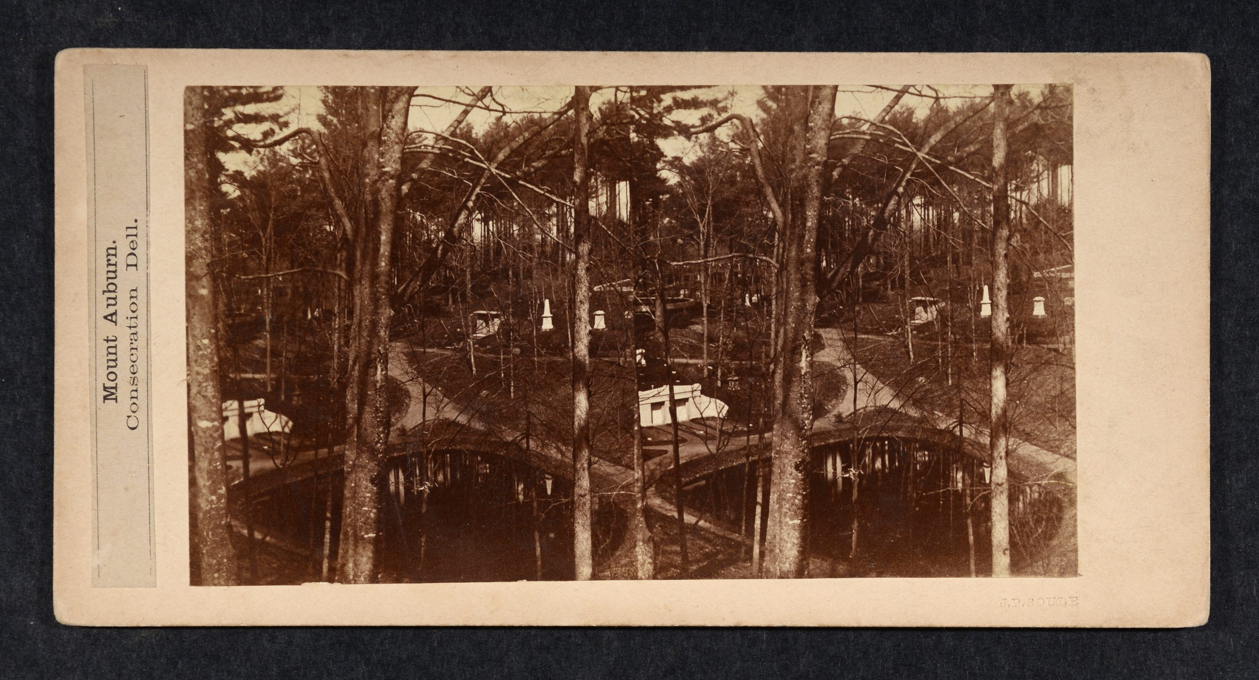 Stereoview of vernal pool below with trees, monuments and path in distance.