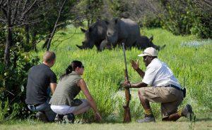 7 days Uganda wildlife safari Kidepo Valley & Mount Elgon hiking tour