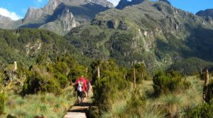 Uganda Mountain Hiking Safaris to Mount Elgon - Uganda Safari News 9 tips on how to recover after a hiking trip-Uganda Safari news
