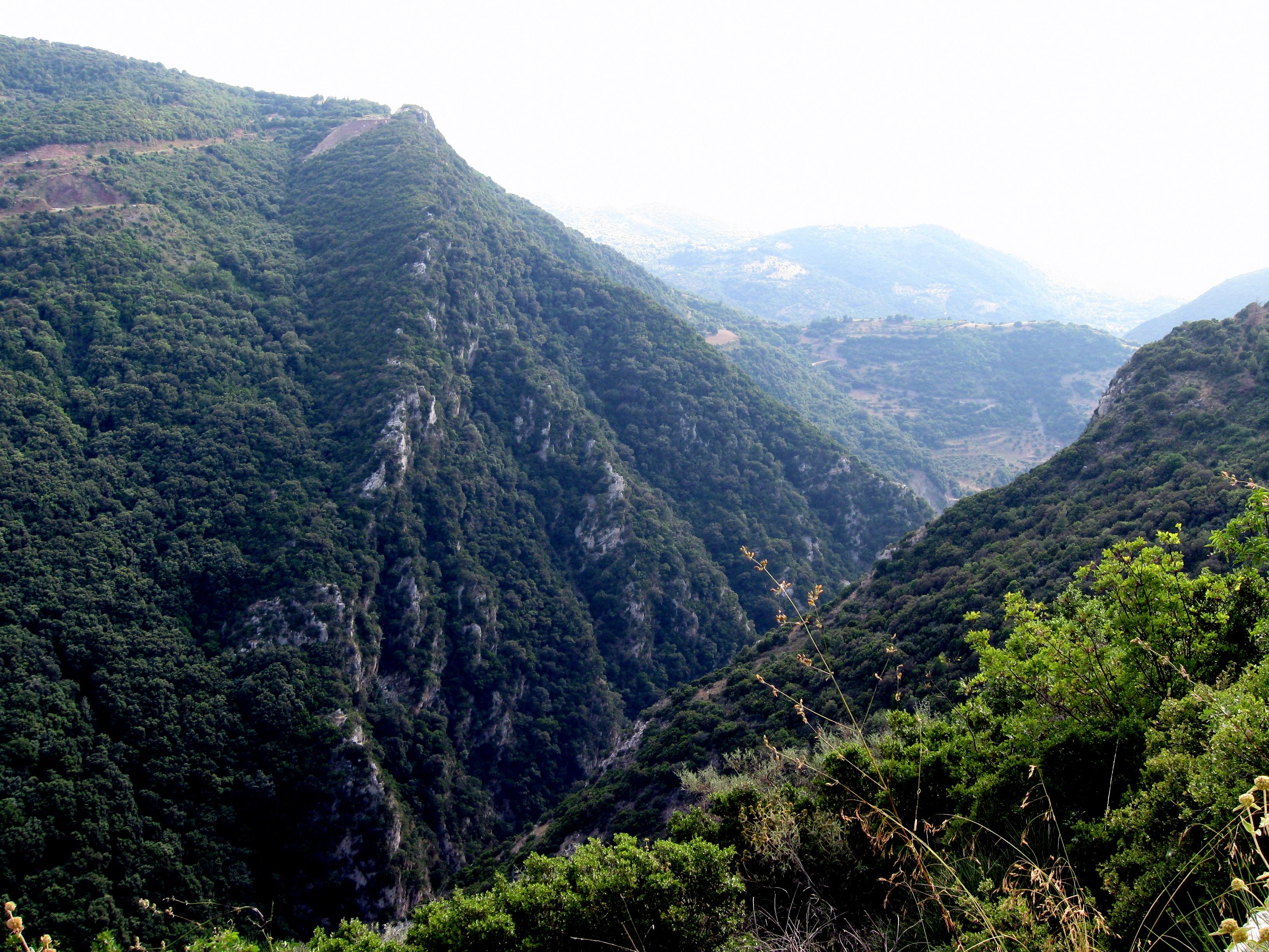 The Neda Gorge
