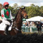 A Horse is a Horse: The 2012 Charleston Cup