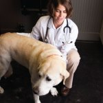 Your Furry Family Member's Doctor: Cara Daniel of Tidewater Veterinary
